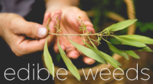 Green Week Workshop